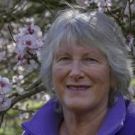 Carolyn Collins